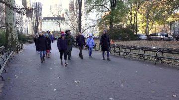感恩節大餐過後 黑五徒步遊紐約公園