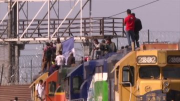 MS-13幫匪加州被捕 曾混入大篷車移民