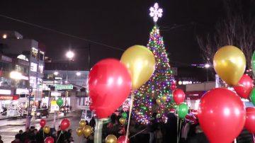 延续18年传统 纽约法拉盛圣诞树点亮