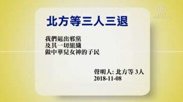 【禁闻】11月9日退党精选