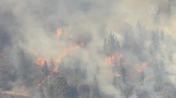 北加州大火肆虐 烟雾弥漫旧金山湾区