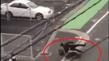 日本野豬撞翻西裝男猛攻12秒 雙腳縫13針(視頻)