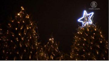 新聞放輕鬆:倫敦最受歡迎酒吧 點亮95棵聖誕樹