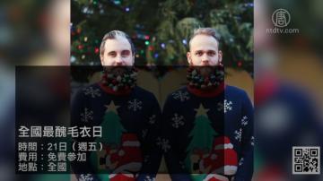 【灣區週末好去處】18年12月第3期