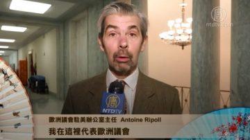 欧洲议会驻美办公室主任 Antoine Ripoll