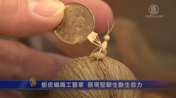 树皮编织工艺家 展现坚韧生动生命力