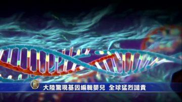 大陆惊现基因编辑婴儿  全球猛烈谴责