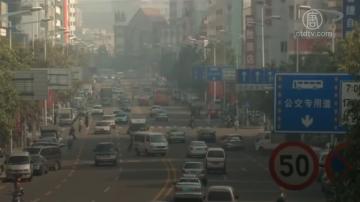 【禁聞】報告:貿易戰重創中國經濟