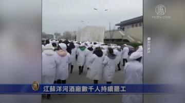 【禁聞】江蘇洋河酒廠數千人持續罷工