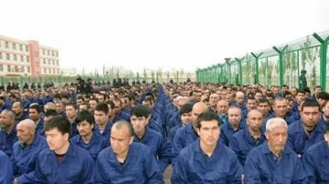 中共关押200万维族人 美参议员吁贸易谈判提人权