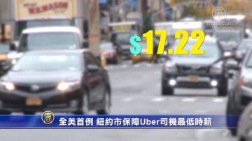 全美首例 紐約市保障Uber司機最低時薪