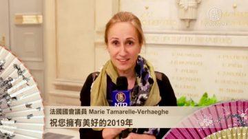 法国国会议员Verhaeghe与Lacroute女士拜年