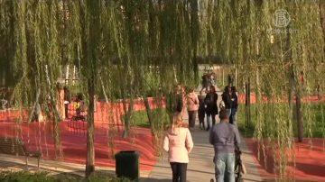 讓城市變綠色 米蘭雄心植樹三百萬