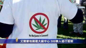 艾爾蒙地擬建大麻中心 500華人遊行抵制