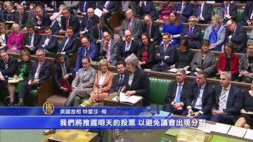 脫歐進程跌宕起伏 英首相艱難闖關