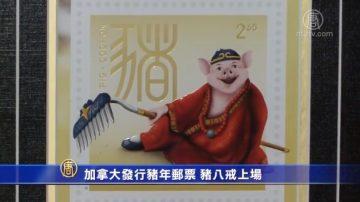 加拿大發行豬年郵票 豬八戒上場