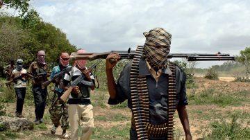 空袭索马利亚青年党 美军击毙52好战分子
