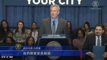 纽约市教育理事会竞选 2月14日开跑