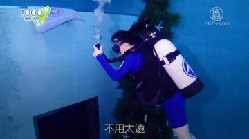 1000步的缤纷台湾:亚洲第一座深水濳水旅馆