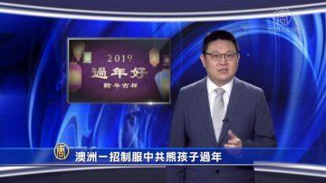 【微視頻】澳洲一招制服中共熊孩子過年