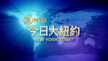 【今日大纽约】2月8日完整版