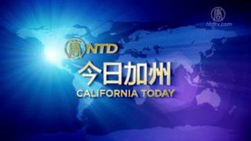 【今日加州】2月8日完整版