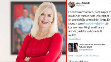 【热点互动】瑞典大使被当枪使 中共统战又一出戏?