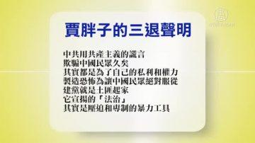 【禁闻】2月28日退党精选