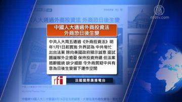 全球看中國:外商不信任《外商投資法》 凌友詩政協發言後遭罰50萬
