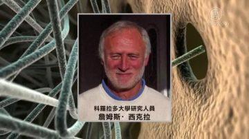 中國轉基因猴實驗 美科學家:違反道德